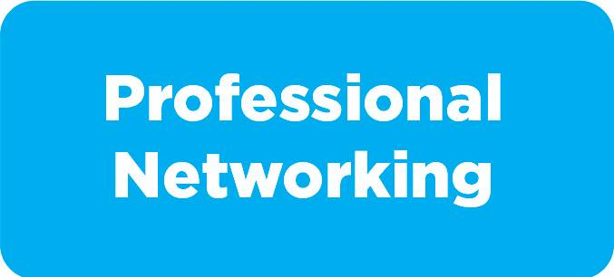 Professional Networking Button